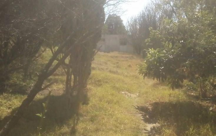 Foto de terreno habitacional en venta en, san francisco ocotelulco, totolac, tlaxcala, 1859964 no 02