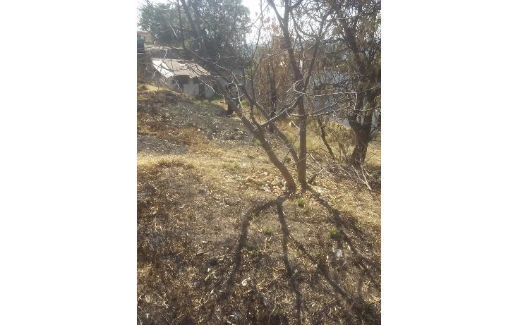 Foto de terreno habitacional en venta en  , san francisco ocotelulco, totolac, tlaxcala, 1859964 No. 14