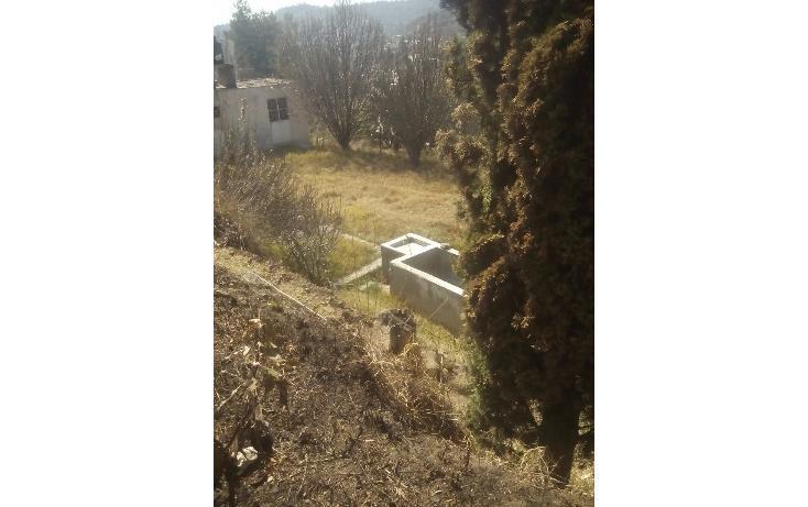 Foto de terreno habitacional en venta en  , san francisco ocotelulco, totolac, tlaxcala, 1859964 No. 16