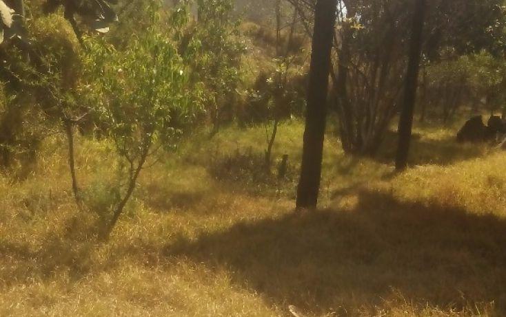 Foto de terreno habitacional en venta en, san francisco ocotelulco, totolac, tlaxcala, 1859964 no 24