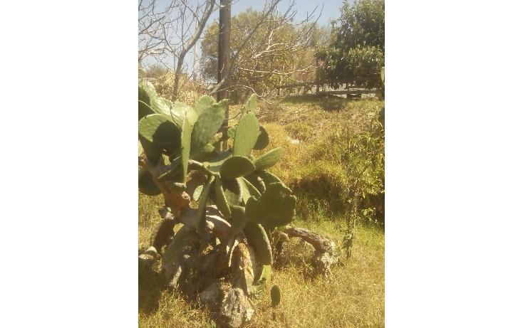 Foto de terreno habitacional en venta en  , san francisco ocotelulco, totolac, tlaxcala, 1859964 No. 27