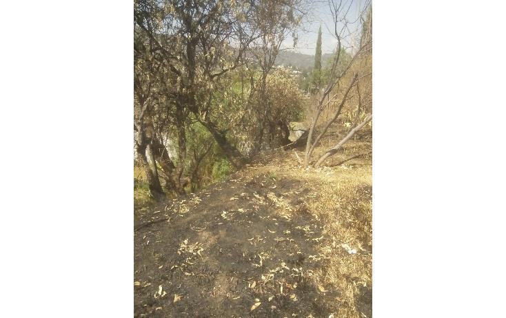 Foto de terreno habitacional en venta en  , san francisco ocotelulco, totolac, tlaxcala, 1859964 No. 33