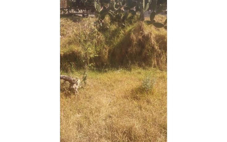 Foto de terreno habitacional en venta en  , san francisco ocotelulco, totolac, tlaxcala, 1859964 No. 36