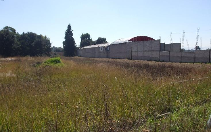 Foto de terreno habitacional en venta en  , san francisco papalotla centro, papalotla de xicohténcatl, tlaxcala, 1714040 No. 04