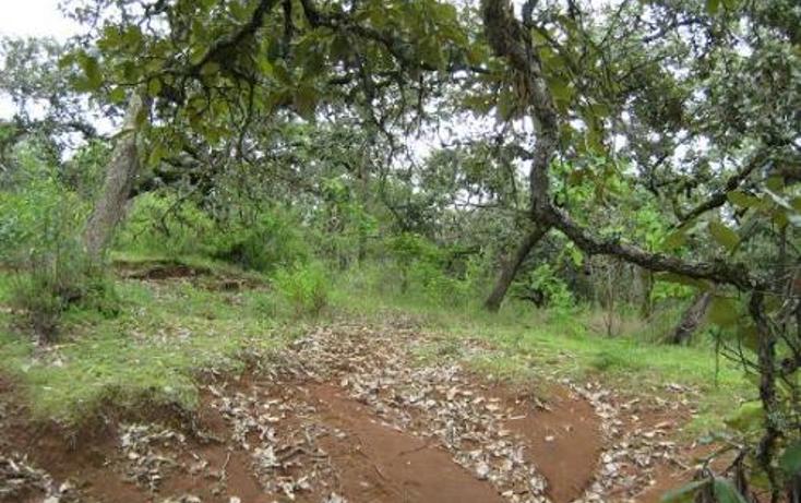 Foto de terreno comercial en venta en  , san francisco periban, peribán, michoacán de ocampo, 1202967 No. 01