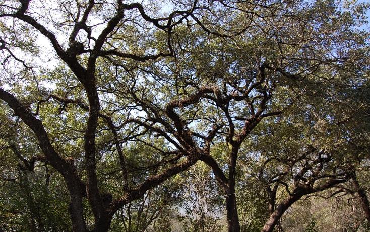 Foto de rancho en venta en  , san francisco, santiago, nuevo león, 1069015 No. 06