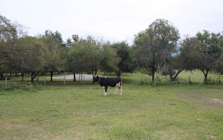 Foto de terreno habitacional en venta en  , san francisco, santiago, nuevo león, 1343507 No. 12