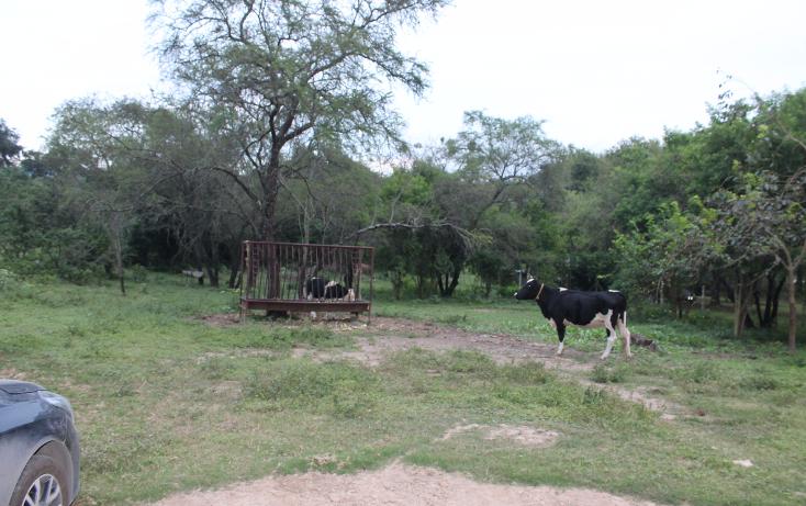 Foto de terreno habitacional en venta en  , san francisco, santiago, nuevo león, 1343507 No. 13