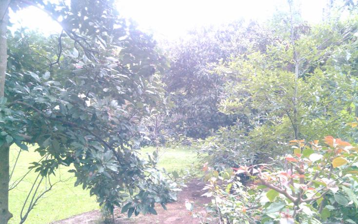 Foto de terreno habitacional en venta en  , san francisco, santiago, nuevo le?n, 939639 No. 10