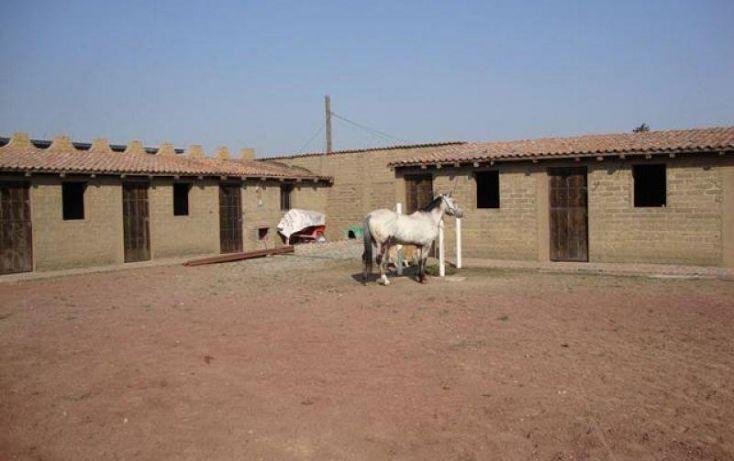 Foto de rancho en venta en, san francisco zentlalpan, amecameca, estado de méxico, 1787692 no 02
