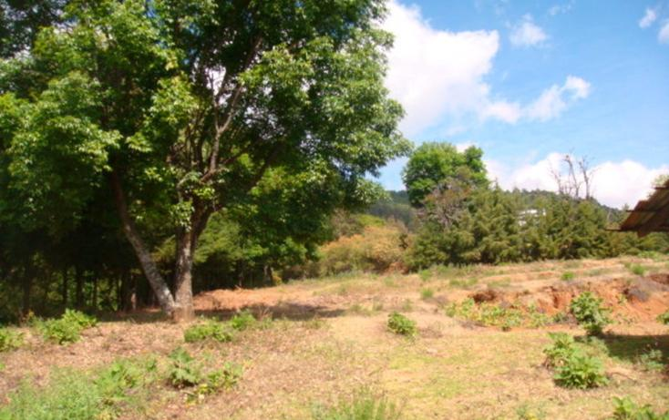 Foto de terreno habitacional en venta en san gabriel ixtla , san gabriel ixtla, valle de bravo, méxico, 2714862 No. 07