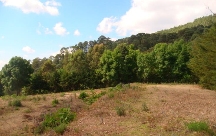 Foto de terreno habitacional en venta en  , san gabriel ixtla, valle de bravo, m?xico, 829489 No. 02