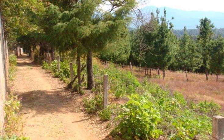 Foto de terreno habitacional en venta en  , san gabriel ixtla, valle de bravo, m?xico, 829489 No. 04