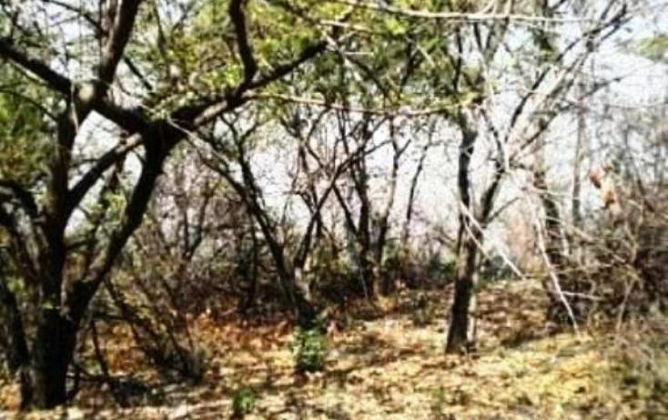 Foto de terreno habitacional en venta en  , san gaspar, jiutepec, morelos, 1103545 No. 07