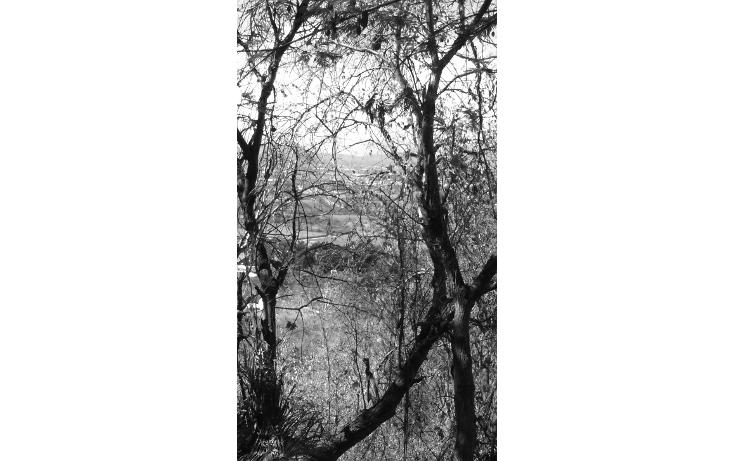 Foto de terreno habitacional en venta en  , san gaspar, jiutepec, morelos, 1612582 No. 05