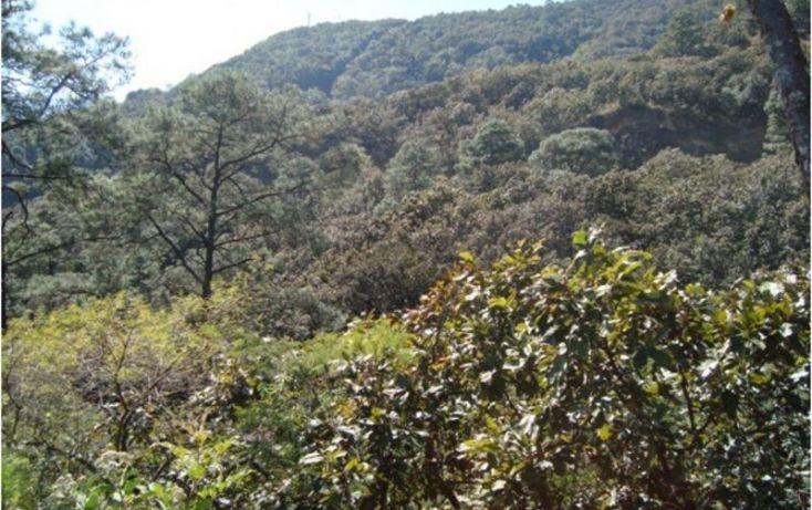 Foto de terreno habitacional en venta en, san gaspar, valle de bravo, estado de méxico, 2020907 no 01