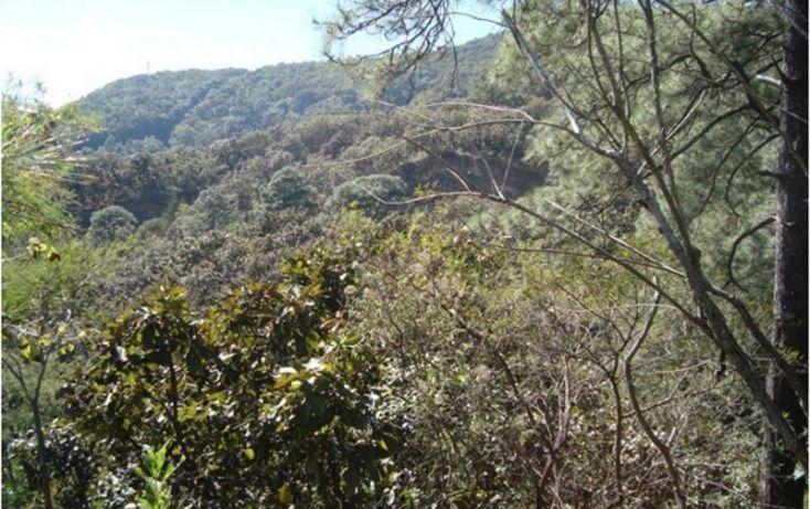 Foto de terreno habitacional en venta en, san gaspar, valle de bravo, estado de méxico, 2020907 no 03
