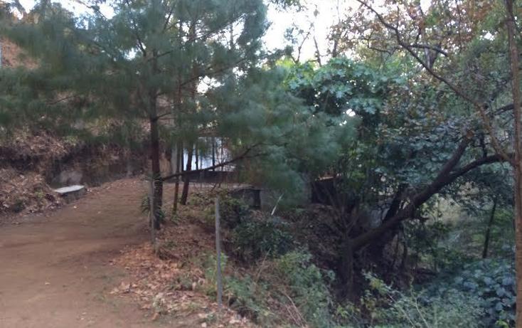 Foto de terreno habitacional en venta en  , san gaspar, valle de bravo, m?xico, 1835958 No. 06