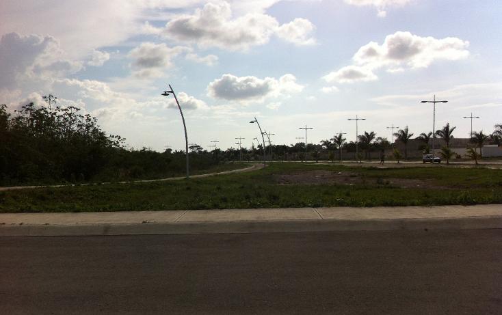 Foto de terreno comercial en venta en  , san gervasio, cozumel, quintana roo, 1089585 No. 03