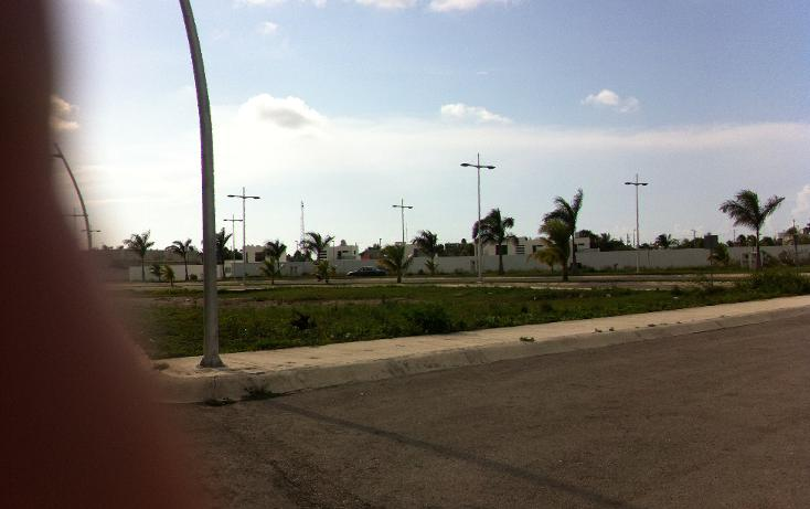 Foto de terreno comercial en venta en  , san gervasio, cozumel, quintana roo, 1089585 No. 05
