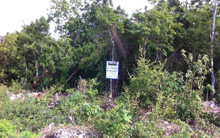 Foto de terreno comercial en venta en  , san gervasio, cozumel, quintana roo, 1089585 No. 06