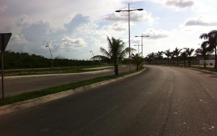 Foto de terreno comercial en venta en  , san gervasio, cozumel, quintana roo, 1089585 No. 09