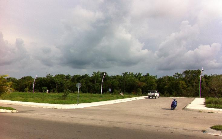 Foto de terreno comercial en venta en  , san gervasio, cozumel, quintana roo, 1089585 No. 10