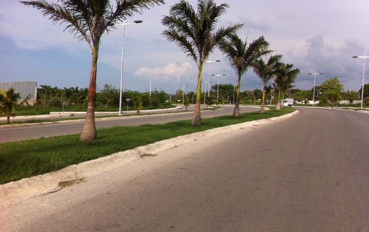 Foto de terreno comercial en venta en  , san gervasio, cozumel, quintana roo, 1089585 No. 13