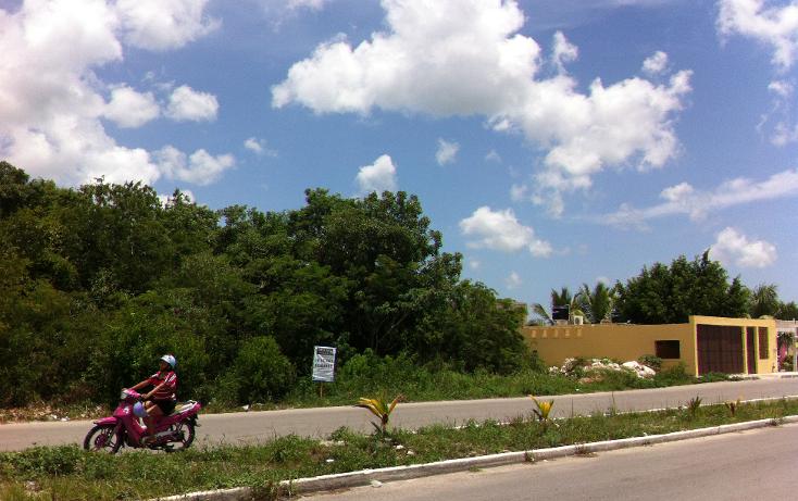 Foto de terreno comercial en venta en  , san gervasio, cozumel, quintana roo, 1259089 No. 04