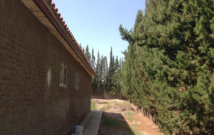 Foto de rancho en venta en, san guillermo o 9 millas, aquiles serdán, chihuahua, 1313887 no 04