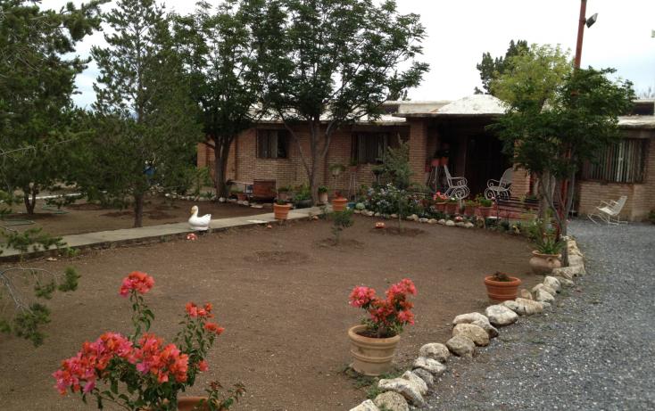 Foto de rancho en venta en, san ignacio de abajo, arteaga, coahuila de zaragoza, 1218291 no 03