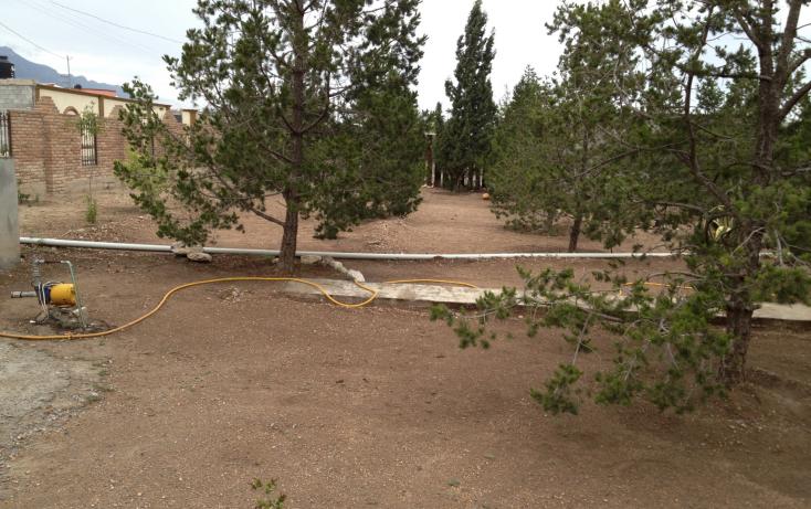 Foto de rancho en venta en, san ignacio de abajo, arteaga, coahuila de zaragoza, 1218291 no 05