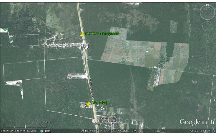 Foto de terreno comercial en venta en  , san ignacio, progreso, yucatán, 1088173 No. 01