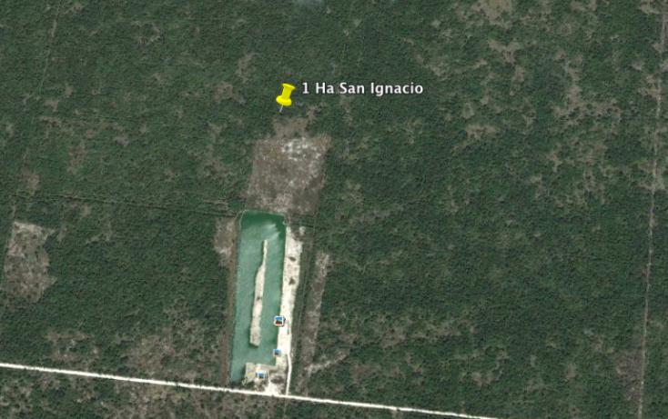 Foto de terreno habitacional en venta en, san ignacio, progreso, yucatán, 1103689 no 01