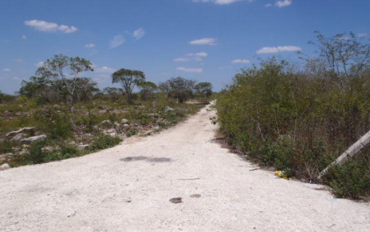 Foto de terreno habitacional en venta en, san ignacio, progreso, yucatán, 1103689 no 04