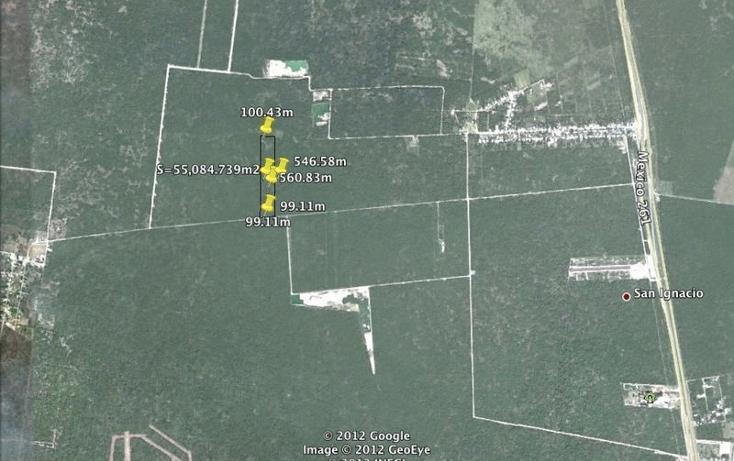 Foto de terreno habitacional en venta en  , san ignacio, progreso, yucatán, 1278499 No. 01
