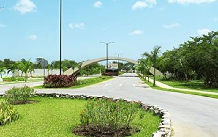 Foto de terreno habitacional en venta en, san ignacio, progreso, yucatán, 1434461 no 03