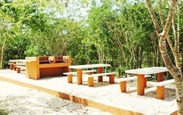 Foto de terreno habitacional en venta en  , san ignacio, progreso, yucatán, 1434461 No. 05