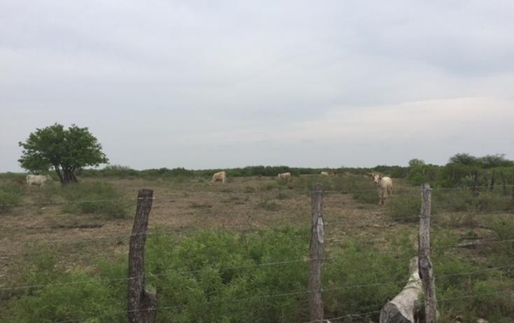Foto de rancho en venta en  , san isidro, china, nuevo león, 1862420 No. 06