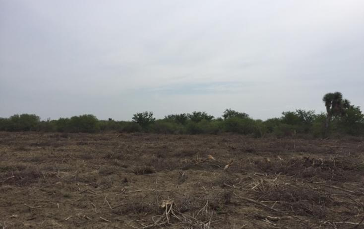 Foto de rancho en venta en  , san isidro, china, nuevo león, 1862420 No. 10