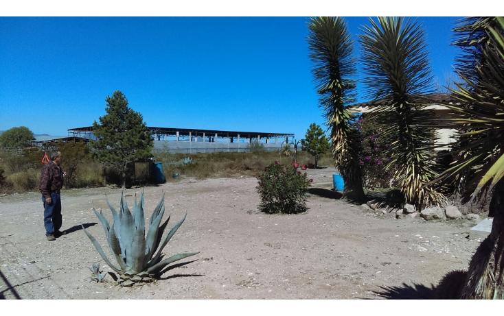 Foto de terreno habitacional en venta en  , san isidro de las palomas, arteaga, coahuila de zaragoza, 1475957 No. 07