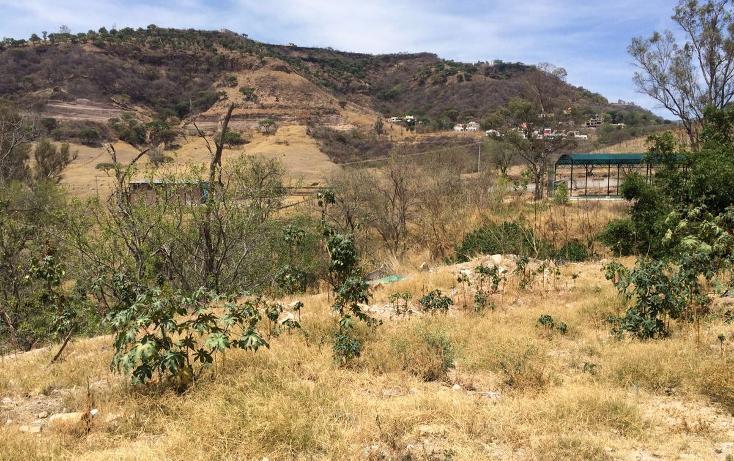 Foto de terreno habitacional en venta en  , san isidro, zapopan, jalisco, 1897186 No. 06