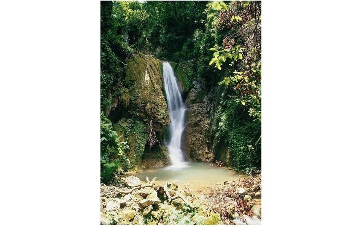 Foto de terreno comercial en venta en  , san joaquín, san joaquín, querétaro, 1256425 No. 05