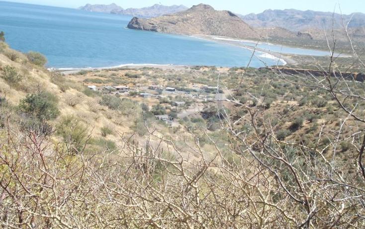 Foto de terreno comercial en venta en  , san jos? de comond?, comond?, baja california sur, 1844532 No. 05