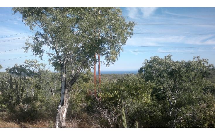 Foto de rancho en venta en  , san josé del cabo (los cabos), los cabos, baja california sur, 1271299 No. 08