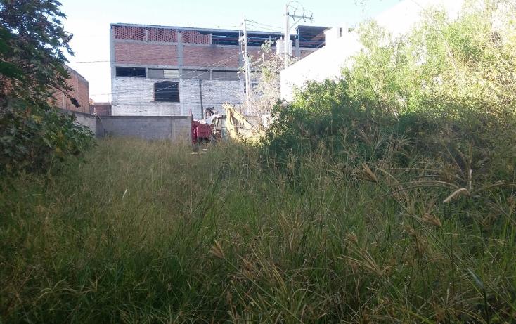 Foto de terreno comercial en venta en  , san josé del consuelo, león, guanajuato, 1503583 No. 10
