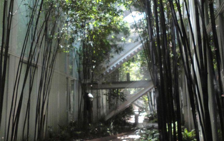 Foto de departamento en renta en, san josé insurgentes, benito juárez, df, 1998603 no 09