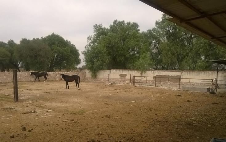 Foto de rancho en venta en  , san josé iturbide centro, san josé iturbide, guanajuato, 1456955 No. 09