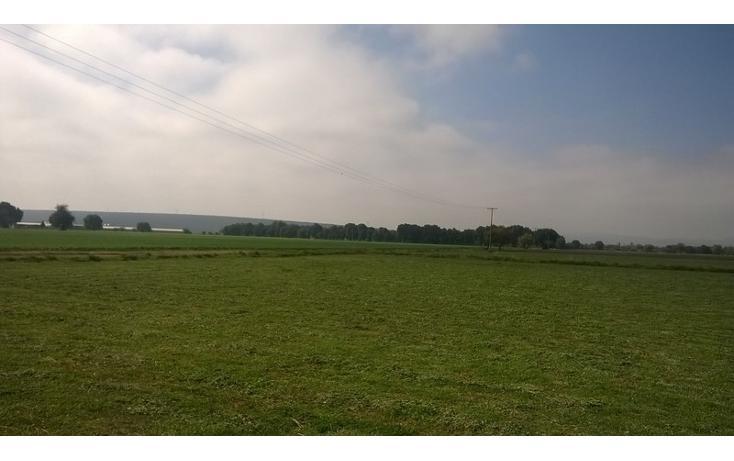 Foto de rancho en venta en  , san josé iturbide centro, san josé iturbide, guanajuato, 1456955 No. 11