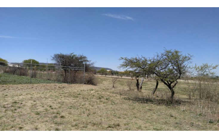 Foto de terreno habitacional en venta en  , san jos? iturbide centro, san jos? iturbide, guanajuato, 1836596 No. 14